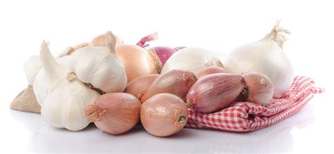 comment cuisiner patisson oignon ail échalotes comment les conserver