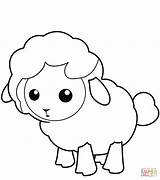 Lamb Coloring Pages Drawing Lion Sheep Printable Colouring Sheet Crafts sketch template