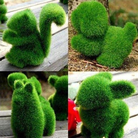 animal shaped bushes google search shrubs  bushes