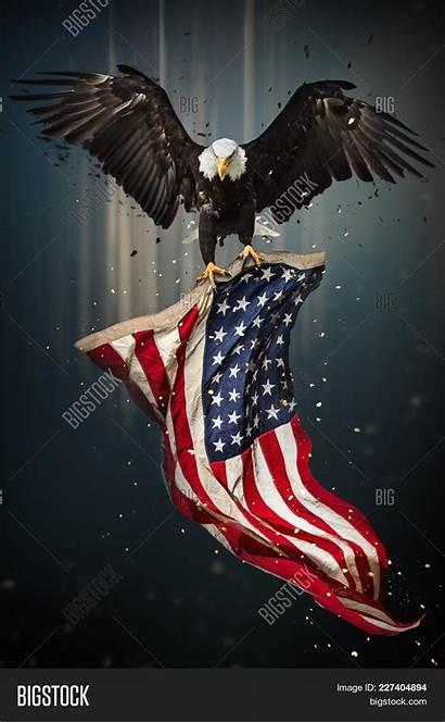 Eagle American Bald America Flying Flag Patriotic