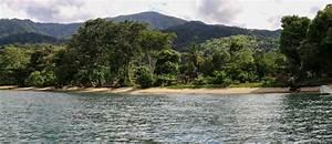 Masoala – Largest National Park in Madagascar | EnviroReach