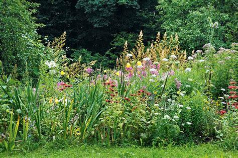 Natur Garten Natur Im Garten Im Garten Eines Sammlers