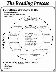 Diagram Of Reading Process