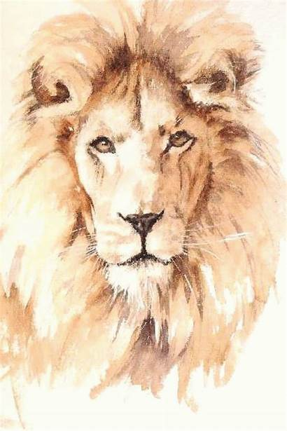 Lion Aquarelle Dawson Geoff Kaynağı Makalenin Painting