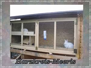 Kaninchenstall Selber Bauen Für Draußen : kaninchenstall bauen ~ Lizthompson.info Haus und Dekorationen