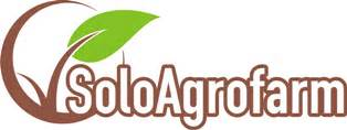 Gugur Kandungan 2 Minggu Jual Berbagai Jenis Pupuk Organik Padat Cair Bahan Alami
