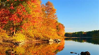 Fall Leaf Foliage Map Peak Peeping Califonia