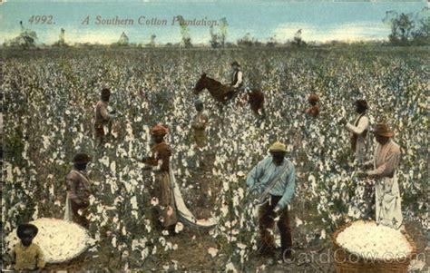 southern cotton plantation black americana