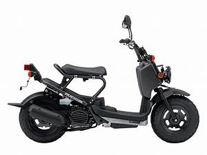 2009 Honda Ruckus Scooter Wallpapers