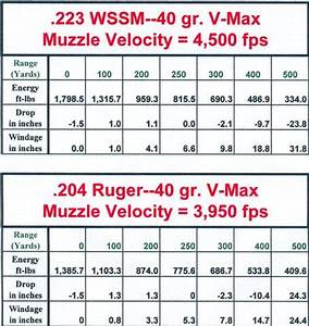243 Caliber Trajectory Chart 204 Or 25 Wssm Huntingnet Com Forums