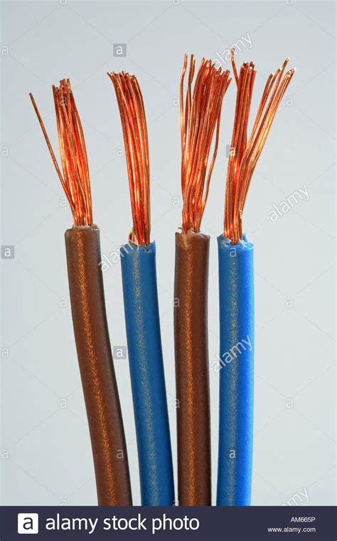 blue and brown copper cables with bare copper wires stock