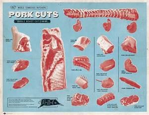 Pork Cuts Chart  Kitchen