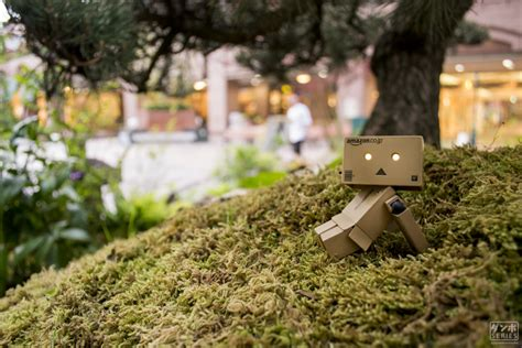 Relaxing Anime Wallpaper - danbo japan japanese japanese garden nature tokyo