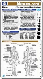 Image gallery neuro exam template for Neurological exam template