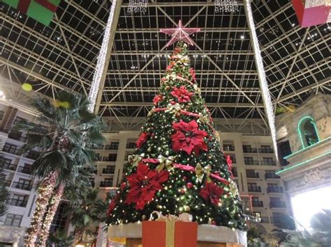 christmas tree picture of gaylord texan resort