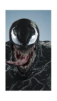 venom Venom 3D model rigged | CGTrader