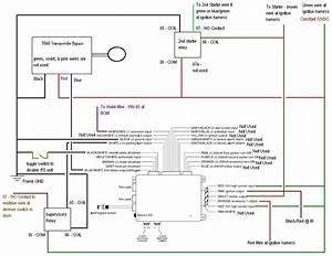 Avital 5303 Wiring Diagram