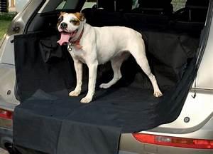 Voiture Pour Chien : prot ge coffre voiture pour chien accessoires voiture chien ~ Medecine-chirurgie-esthetiques.com Avis de Voitures