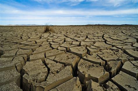 chambre d agriculture 61 climat à problème mondial solutions mondiales euractiv fr