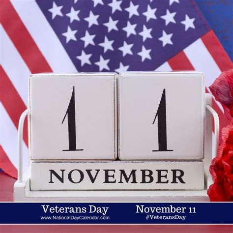 history  veterans day video south florida reporter