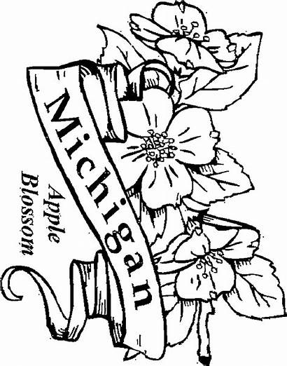 Coloring Michigan State Pages Flowers Apple Blossom