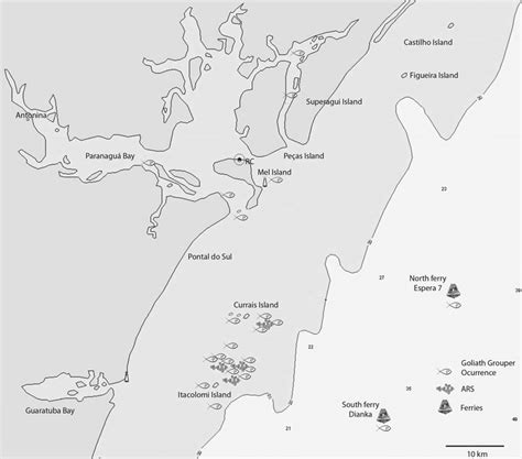 reference map goliath grouper occurrence points main coast