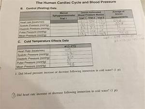 Solved  The Human Cardiac Cycle And Blood Pressure B  Cont