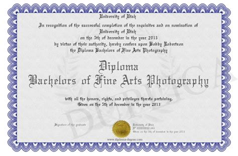 diploma bachelors  fine arts photography