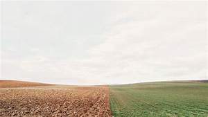 mx85-barren-land-green-field-nature - Papers co