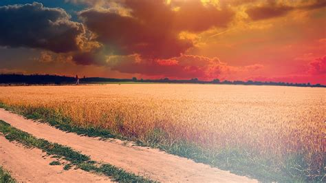 Mm00-hot-sunny-day-instagram-look-nature-farm