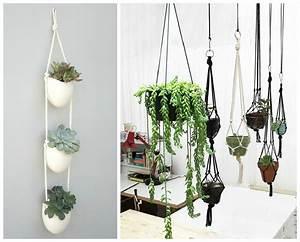 Plantes D39intrieur Dcorez Avec Des Plantes Vertes