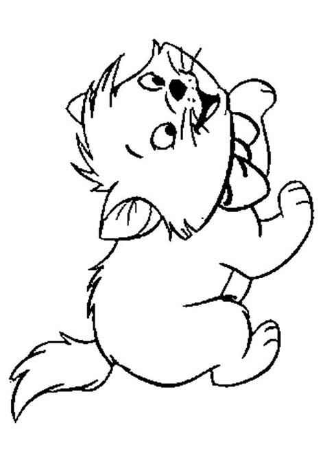 printable kitten coloring pages kitten coloring pictures  preschoolers kids