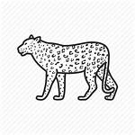 Leopard Icon Emoji Cat Vectorified
