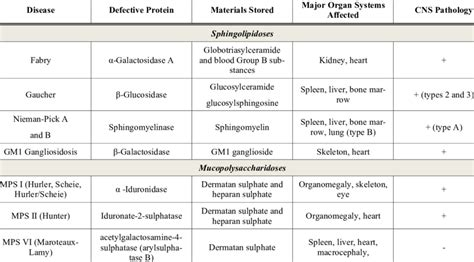 Most Common Types Of Lysosomal Storage Disorders