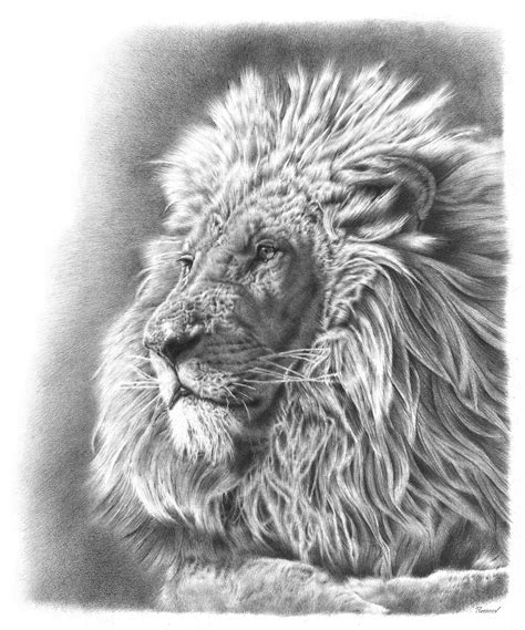 remrov artist extraordinairecreating animal awareness