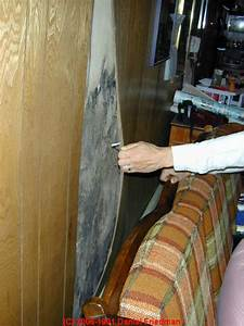 wet basement flooded building salvage cleanout dry out With cleaning wood walls