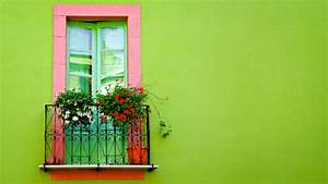 Green Wall Window Wallpapers