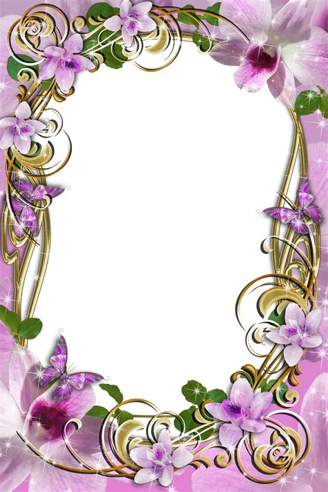 transparent delicate frame  flowers gallery