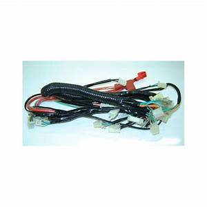Main Wiring Harness Lifan Eagle 125  Lf125gy