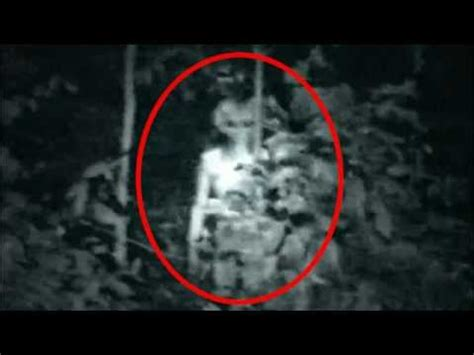 top  proof  aliens pictures   proof