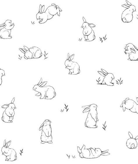 lilipinso bunny wallpaper pet rabbits minidecocouk