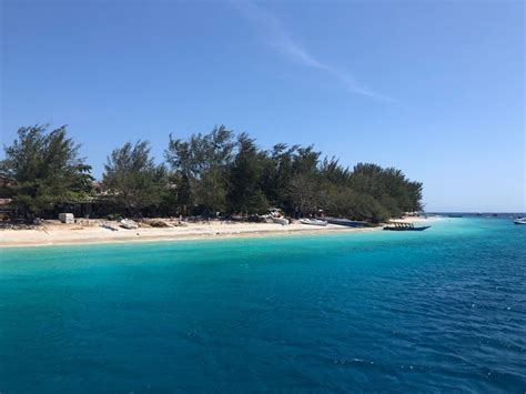 Gili Trawangan Dive Padi Dive Centres In Lombok And Gili Islands Reopening