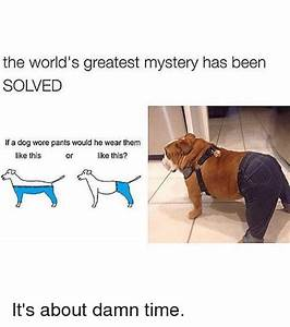 25+ Best Memes About Like This   Like This Memes
