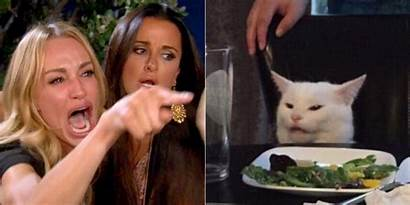 Meme Cat Yelling Woman Smudge Housewives Format