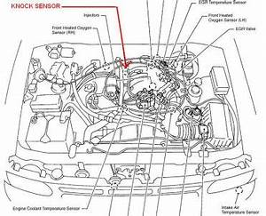 2002 nissan pathfinder engine diagram nissan auto parts for Usb charger wiring diagram as well 1966 ford mustang fuse box location