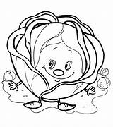 Coloring Cabbage Colouring Printables Adult Fruit Orange Printable Vegetables Sheets Stencils Preschool Embroidery Templates Activities Education sketch template