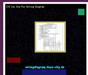 C15 Cat Ecm Pin Wiring Diagram  Wiring Diagram 174725