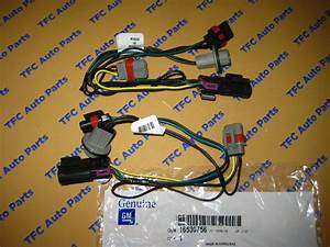 2 Pontiac Grand Prix Front Head Light Wiring Harness Oem New 2004