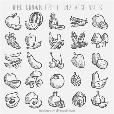 sketches fruit  vegetable collection vector
