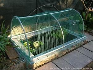Filet De Protection Jardin : le bassin de jardin poissons rouges ~ Dallasstarsshop.com Idées de Décoration